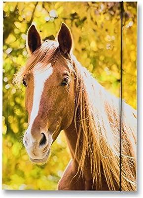 """DIN A3 Sammelmappe Zeichenmappe /""""Pferd/"""" Gummiband folia®"""