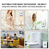 BLANDSTRS Air Purifier Plug in, Mini Smoke Purifier for Home, Odor Eliminator Cleaner, Remove Smoke Smell Portable Air Freshener for Bedroom, Living Room, Hotel, Office, Pet Room, Small Space Use