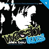 Wasabi Tunes 1 by Wasabi Tunes (2009-07-07)