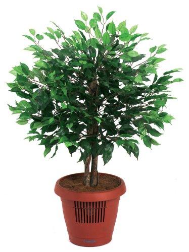 UPC 052777470111, Amcor AM-70 Ficus Tree Air Purifier