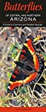 img - for Butterflies of Central & Northern Arizona book / textbook / text book