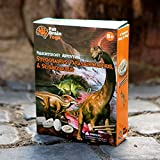 Fat Brain Toys Paleontology Adventure: Stegosaurus Parasaurolophus Seismosaurus Party Favors & Party Fun for Ages 8 to 12