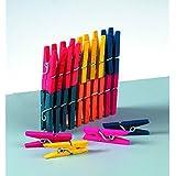 EFCO Wäscheklammern, Holz, mehrfarbig, 25mm, 25-teilig