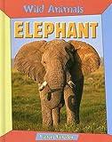 Elephant, Lionel Bender, 1593891911