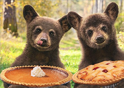 Two Bears Holding Pies Avanti Funny Thanksgiving Card