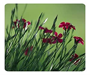 Decorative Mouse Pad Art Print Landscape and Plants Small Field Flowers