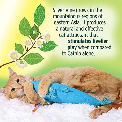 Hartz Cattraction Silver Vine & Catnip Cat Toys 6