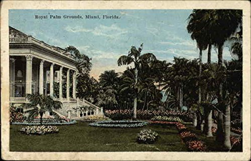 Royal Palm Grounds Miami, Florida Original Vintage Postcard