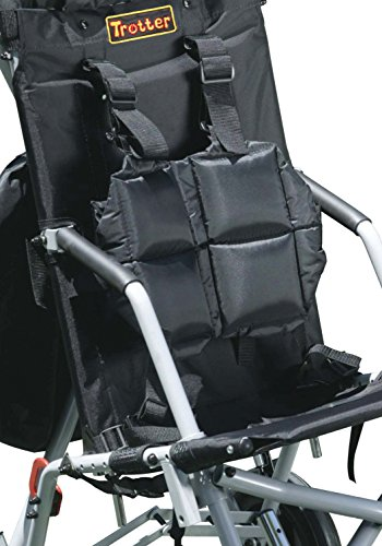Adaptive Strollers For Sale - 3