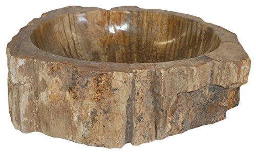 Eden Bath S028PW-P Natural Stone Sink - Petrified Wood by Eden Bath