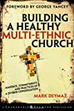 Building a Healthy Multi-ethnic Church 1st Edition