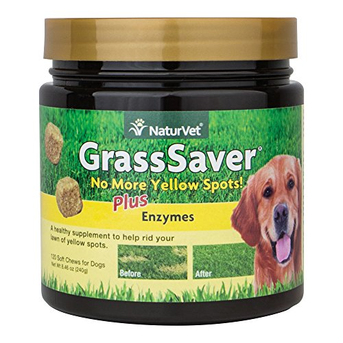 NaturVet 120 Count Grass Saver Soft Chews Jar with Enzymes for Dogs by NaturVet