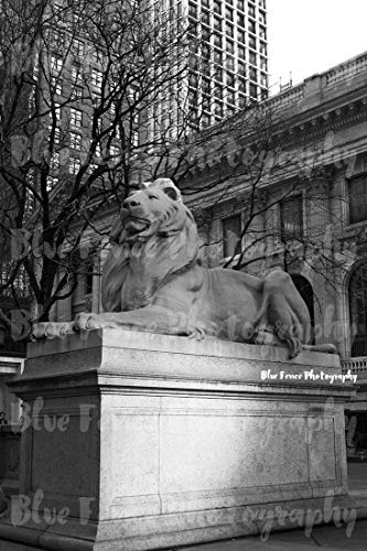 New York Public Library Lion, 42nd Street, Architectural Photography, Black & White, New York City Art, NY Print, Manhattan, Wall Art, Vertical, Sizes Available from 5x7 to 20x30. ()
