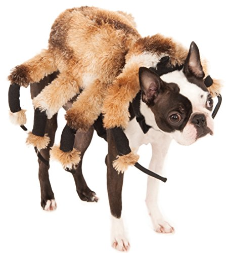 [Giant Spider Pet Suit, Small] (Halloween Spider Costumes)
