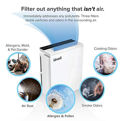 Buy dust filter