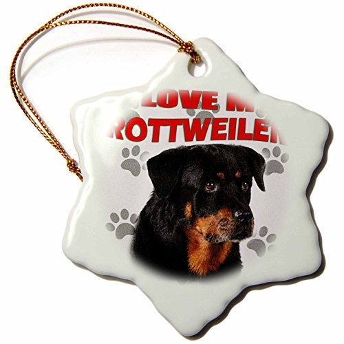 RinaPiro - Dogs Quotes - I Love my Rottweiler. Canvas. Cute dog. - 3 inch Snowflake Porcelain Ornament (251970_1) -