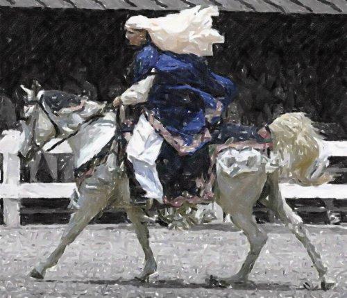 [Arabian Costume Class Horse Matted Art Print - 5 in x 7 in Design - 8 in x 10 in Matted] (Horse Costume Class)