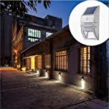 Outdoor LED Garden Lights Solar Power,MeiLiio Stainless Steel Motion Sensor Wall Lamp,Super Bright Home Garden Solar Light,Waterproof Lighting Control Landscape/Fences/Garage/Pathway Lamp (White)