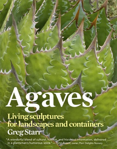 Cheap  Agaves: Living Sculptures for Landscapes and Containers