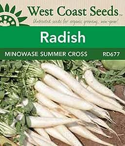 Radish Seeds - Minowase Summer Cross F1