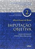 Imputação Objetiva: Crimes De Perigo E Direito Penal Brasileiro - Vol. 2: Volume 2
