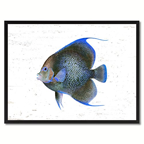 Blue Angel Tropical Fish Art Canvas Print Home Decor Wall Decoration Collection Gift Ideas, Black Frame, 7