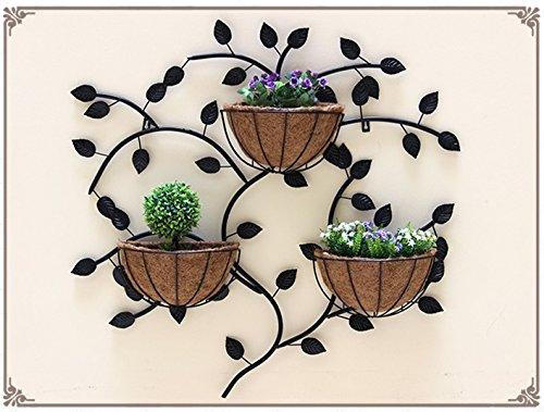 Creative Iron Walls Walls Walls Hanging Racks / Suspended Flowerpots / Indoor Wall Decorators / Plant Shelves ( Color : Black ) by Flower racks - xin