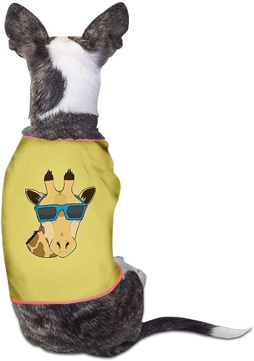 GSEGSEG - Disfraz de Jirafa con Gafas de Sol para Perro, Gato ...