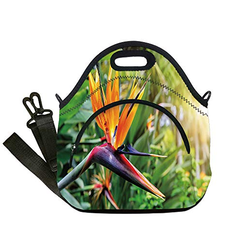 - Insulated Lunch Bag,Neoprene Lunch Tote Bags,Plant,Close up Image of Strelitzia Reginae Bird of Paradise Flower Madeira Island Portugal Decorative,Multicolor,for Adults and children