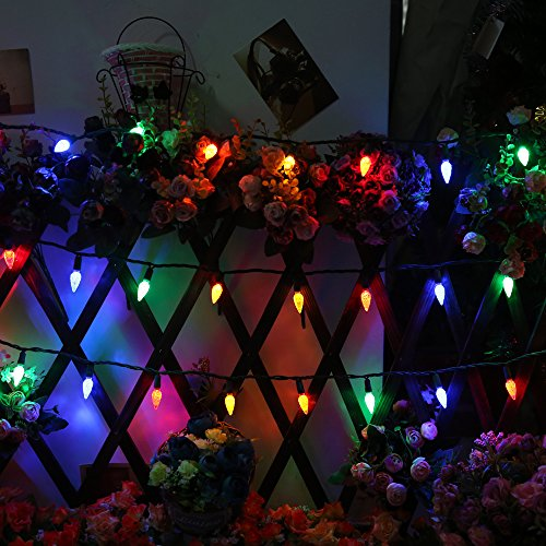 Commercial Grade Outdoor Decorative Light Strings,17Ft Gr...