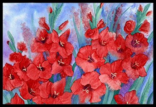 Carolines Treasures IBD0250JMAT Gladioli Indoor or Outdoor Mat Multicolor 24 x 36