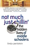 img - for Not Much Just Chillin': The Hidden Lives of Middle Schoolers book / textbook / text book