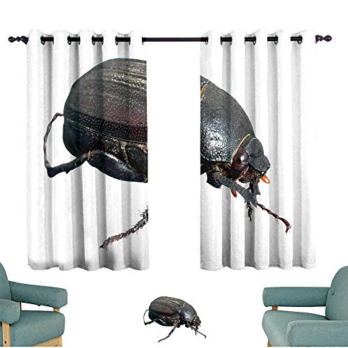 Dallas Chafer - WinfreyDecor Polyester Curtain Beetle Chafer 70%-80% Light Shading, 2 Panels,72