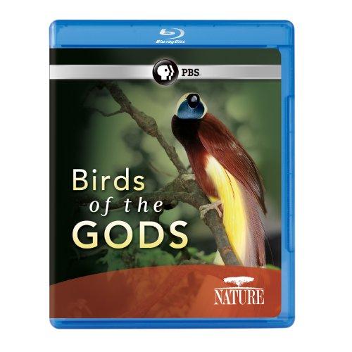 Nature: Birds of the Gods [Blu-ray]