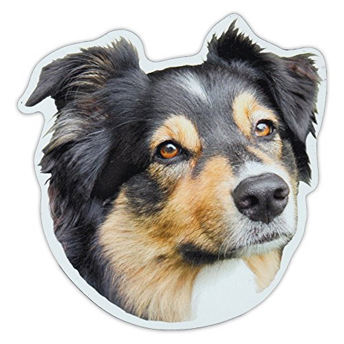 (Magnetic Bumper Sticker - Australian Shepherd (Aussie) Dog Breed Picture Magnet - Cars, Trucks, SUVs, Refrigerators - 5
