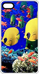 Salt Water Reef Fish White Plastic Case for Apple iPhone 5 or iPhone 5s