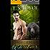 Timberman Werebear (Saw Bears Series Book 3)