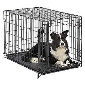 MidWest Homes for Pets Dog Crate | iCrate Single Door & Double Door Folding Metal Dog Crates | Fully Equipped 6