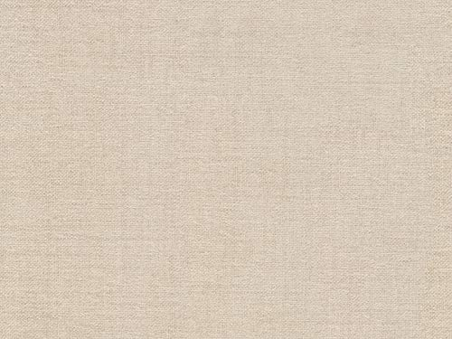 (Spirit 02 Ivory Chenille Upholstery Fabric by The Yard)