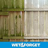 Wet and Forget 10587 1 Gallon Moss, Mold and Mildew