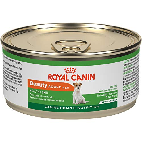 Royal Canin Canine Health Nutrition Adult Beauty In Gel Canned Dog Food, 5.8 oz Can (Case of 24)