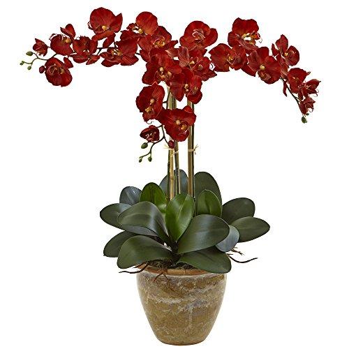 (Nearly Natural Triple Stem Phalaenopsis Silk Arrangement, Autumn)