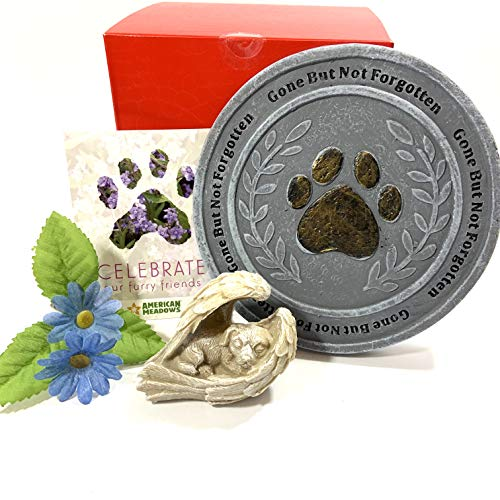 Dog Memorial, Gone But Not Forgotten, Pet Loss for Dog Owner, Paw Print Stepping Stone, Angel Dog Figure, Forget-Me-Not Seeds, Family Pet Remembrance Sympathy Keepsake Gift for Garden or Yard