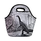 Semtomn Neoprene Lunch Tote Bag Dinosaurs Stegosaurus and Compsognathus in Araucaria Landscape Vintage Engraved Reusable Cooler Bags Insulated Thermal Picnic Handbag for Travel,School,Outdoors,Work