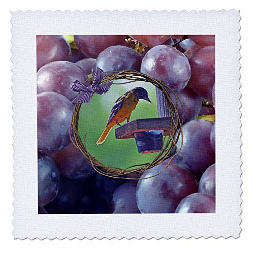 3dRose Beverly Turner Bird Photography - Baltimore Oriole at Feeder, Twig and Grape Frame with Bow, Purple - 20x20 inch Quilt Square ()