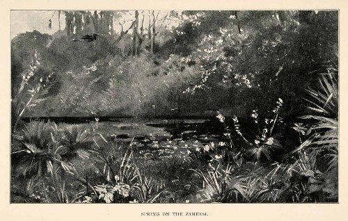 1902 Art - 7