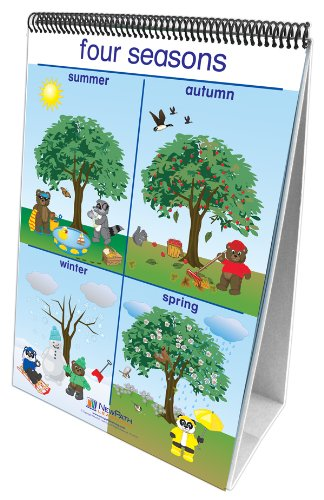 NewPath Learning Weather and Sky Curriculum Mastery Flip Chart Set, Early Childhood
