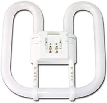 Kosnic 55w 2d Butterfly Cfl Lamp Gr10q Cool White 4000k 4 Pin Exun Dd Fluorescent Neon Tubes Amazon Canada