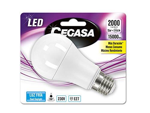 Cegasa Bombillas LED con Luz Fría 5000K E27, 15 W, Blanco 120x60x62 cm: Amazon.es: Iluminación