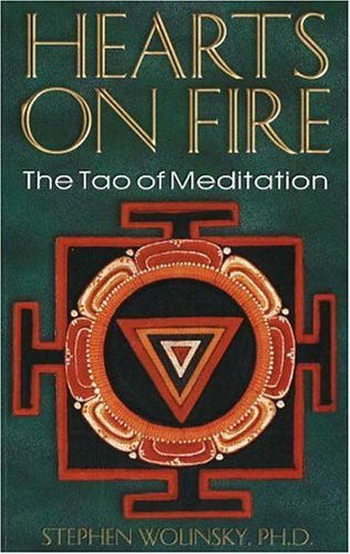 Download Hearts on Fire: The Tao of Meditation, The Birth of Quantum Psychology pdf epub